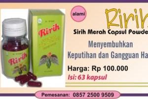 RIRIH (sirih merah 100% alami)