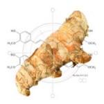 Obat Herbal Untuk Mengobati Penyakit Maag