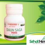 Obat Herbal Daun Saga