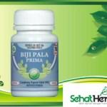 Obat Herbal Biji Pala