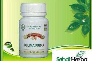 Obat Herbal Buah Delima