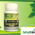 Obat Herbal Daun Kelor