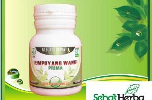 Obat Herbal Lempuyang Wangi
