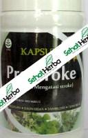 Obat Herbal Pro Stroke (Cara Pengobatan Alami)