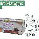 Teh Kulit Manggis Meningkatkan Daya Tahan Tubuh