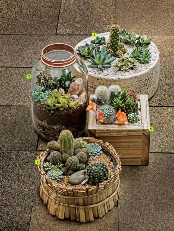 30 Succulent Garden Ideas Indoor And Outdoor For Garden Inspiration