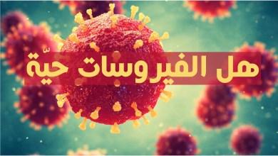 هل الفيروسات حيّة