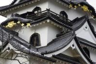 Hikone-jo Roof