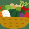 野菜を新鮮に保存する・長持ちさせる方法とは?