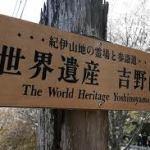 吉野山の桜いつが見ごろ?アクセスは?おすすめコースはあるの?