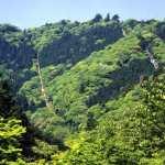 高尾山の登山は初心者も安心コース!服装や持ち物・アクセスは?