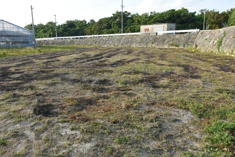 草刈り焼き畑処理