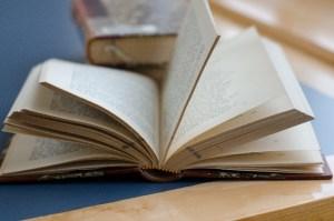 本の中にいる小さな虫を発見