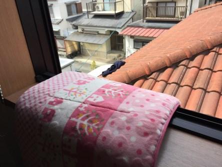 屋根にひっかかった洗濯物