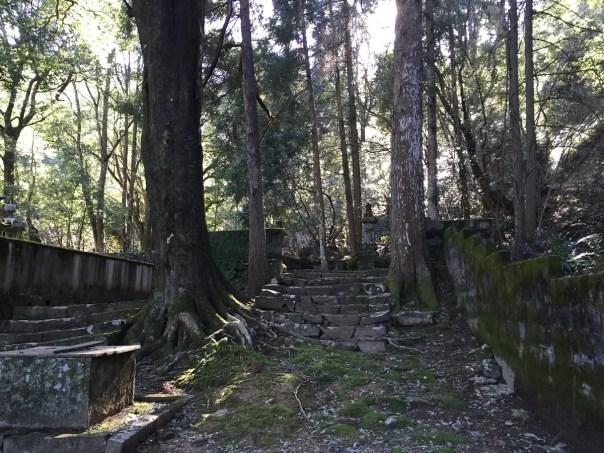 9代生母 墓地