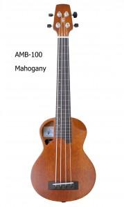 AMB-100