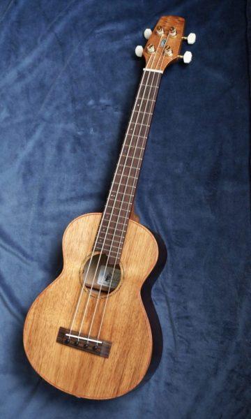 AMB2-282x4 Mobile Mini Bass