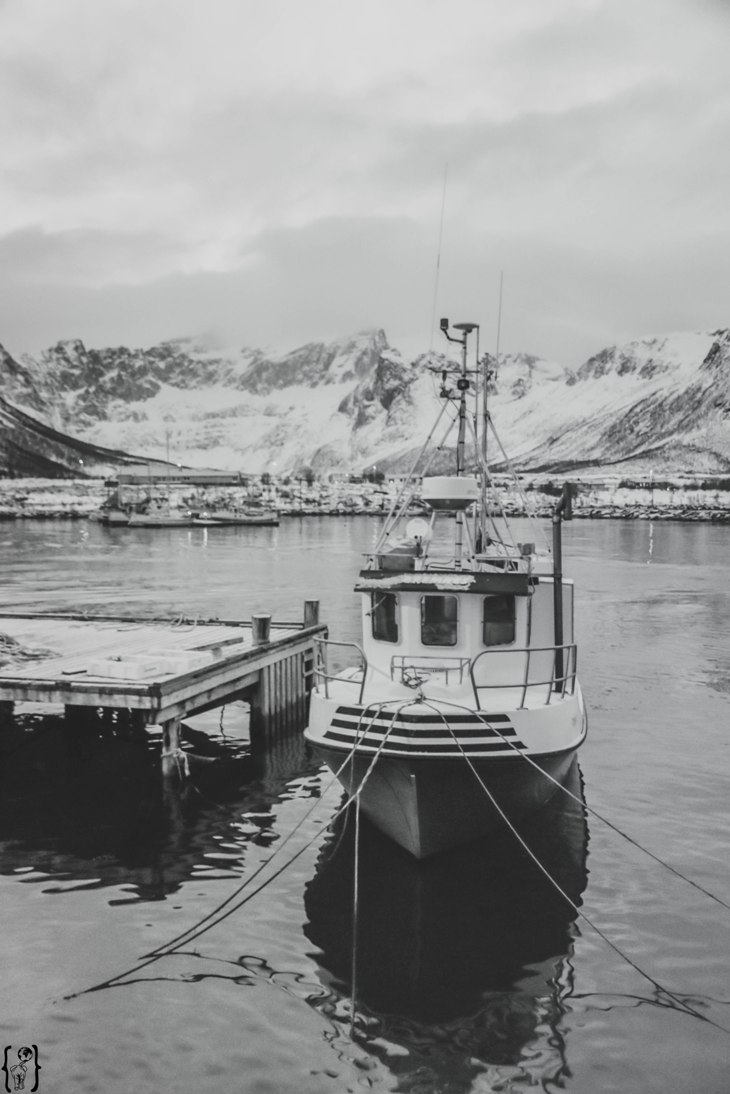 11 Ships Northern Norway
