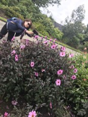 Timaru Botanical Garden