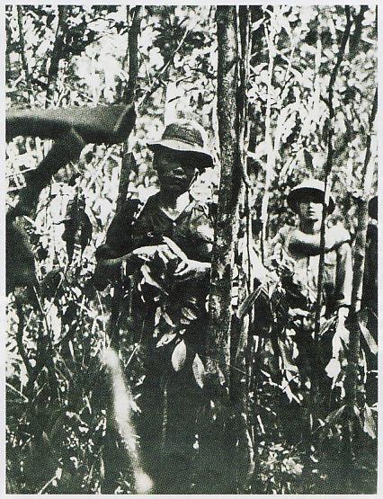 Perang Vietnam Amerika : perang, vietnam, amerika, WARNA, KEHIDUPAN:, PERANG, DARAT, VIETNAM, MEMATIKAN