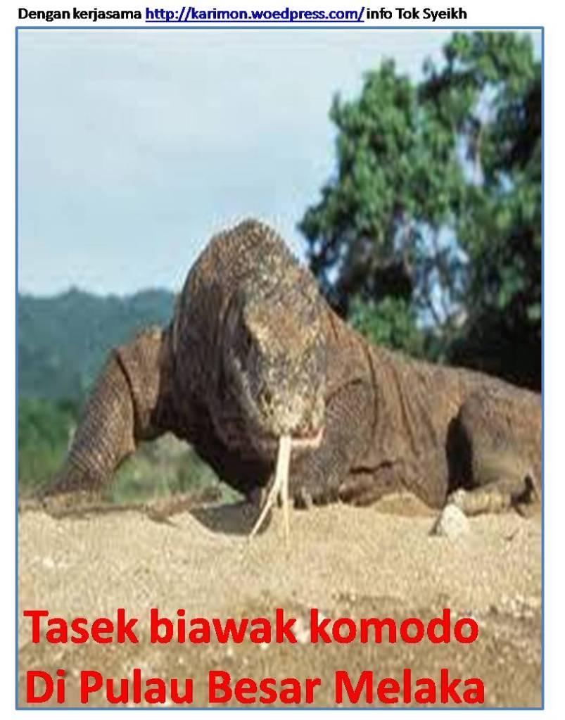 Tasek Biawak Komodo di Pulau Besar  Sejarah Pulau Besar