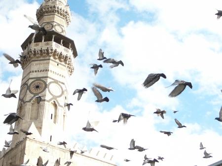 ウマイヤド・モスクのミナレット。 モスクとはイスラム教の礼拝堂のことで、ミナレットとは礼拝時刻の告知(アザーン)を行うのに使われる塔のことである