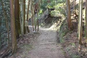 松尾山の登山道