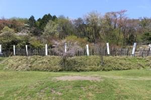 笹尾山の竹矢来