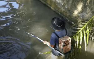 Cara Membuat Setrum Ikan Dengan Mudah 2