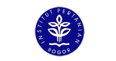 Daftar 15 Universitas Terbaik di Indonesia Tahun 2020