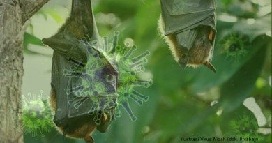 Virus Nipah, Teror Baru Virus Dunia