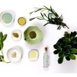 Borelioza zioła które MUSISZ brać żeby wyleczyć boreliozę