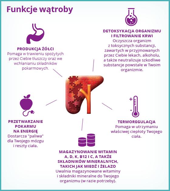 Infografika prezentująca funkcje wątroby