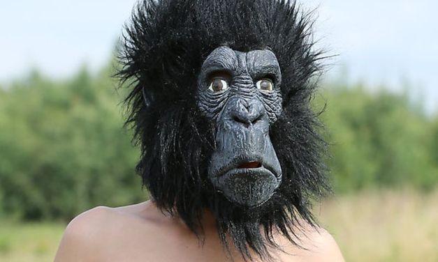 Vrouw in gorillapak zorgt voor arrestatie potloodventer 