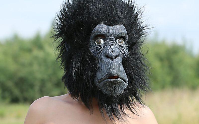 Vrouw in gorillapak zorgt voor arrestatie potloodventer 📷