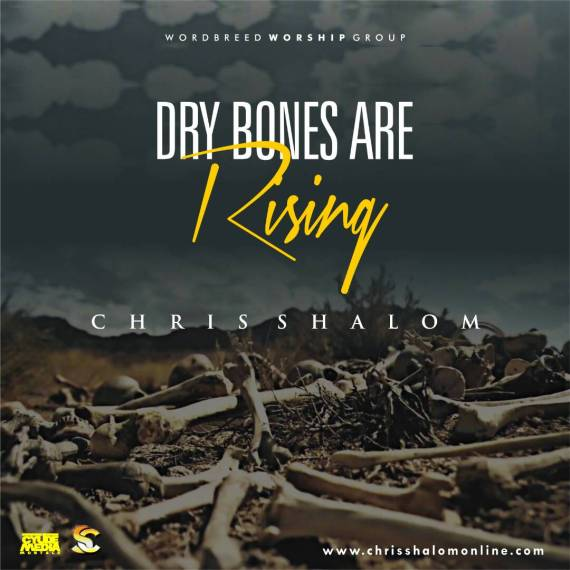 Dry Bones, Chris Shalom - Dry Bones