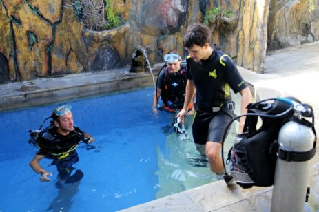 Dive courses started in pool