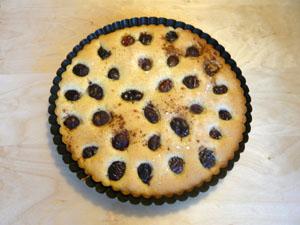 Rührteig-Kuchen mit Obstbelag