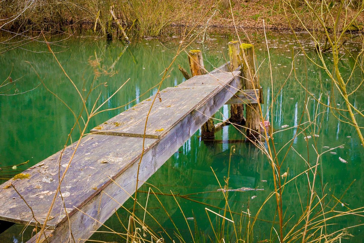 Teich mit Steg