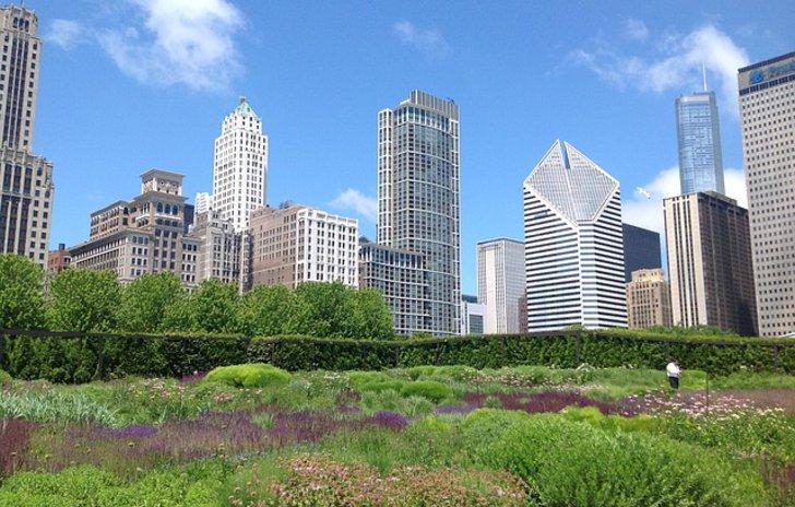 Gartenanlagen vor einer Skyline mit Wolkenkratzern