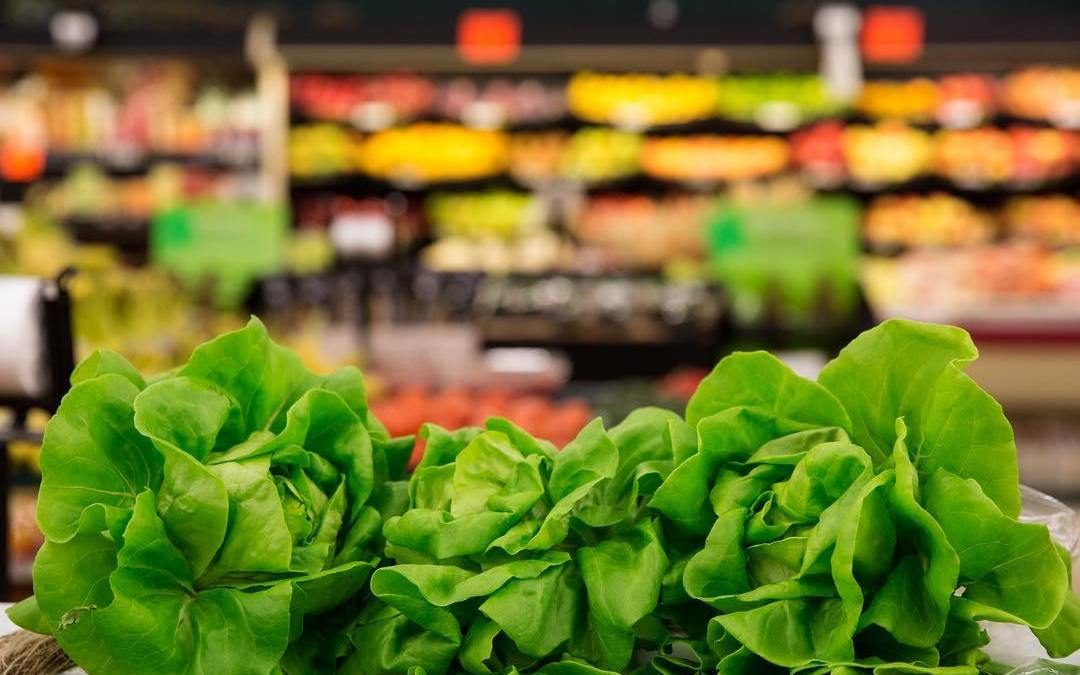 Locally grown Louisiana live lettuce is your solution to the great romaine crisis of 2018….