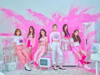 Rocket Punch Pink Punch Promo