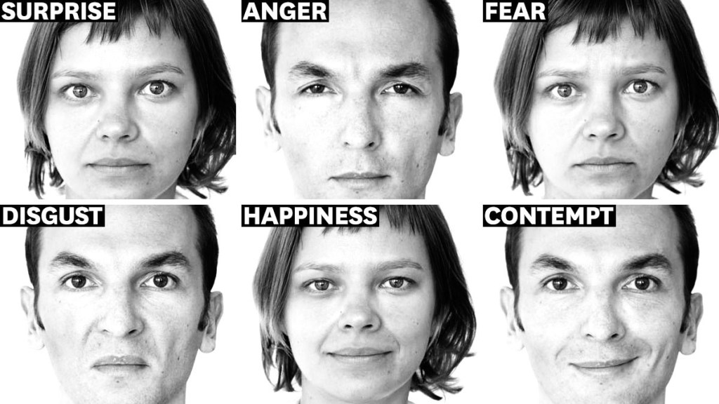 The language of facial expressions