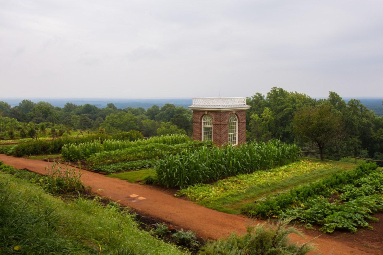 Gardens around Thomas Jefferson's Monticello
