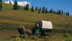 Covered Wagon in Jackson Hole, WY