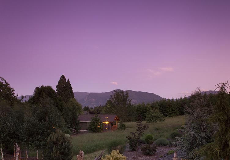 5-Carson_Ridge_Luxury_Cabins_1_-_Nature