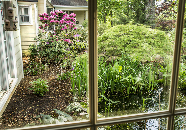 Looking into garden from Inn through window panes with pink rhododendrons