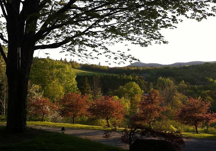 Deerhill Hills Fall