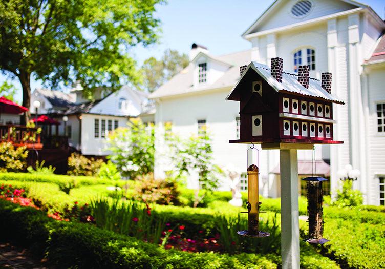 Fairivew birdhouse