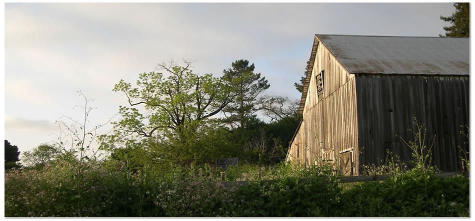 the-gables-barn